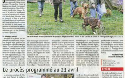 Article Bien Public du 14/03/19